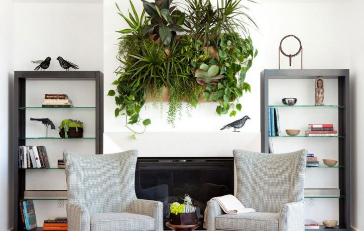 Chairs in a living room with a vertical garden
