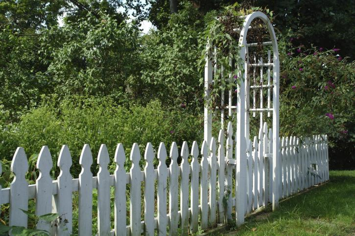 White fence in a garden