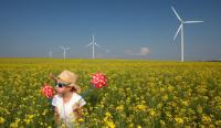 Child in flower fields with wind turbines in background